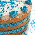 Gluten-Free Sugar Cookie Layer Cake | www.grainchanger.com