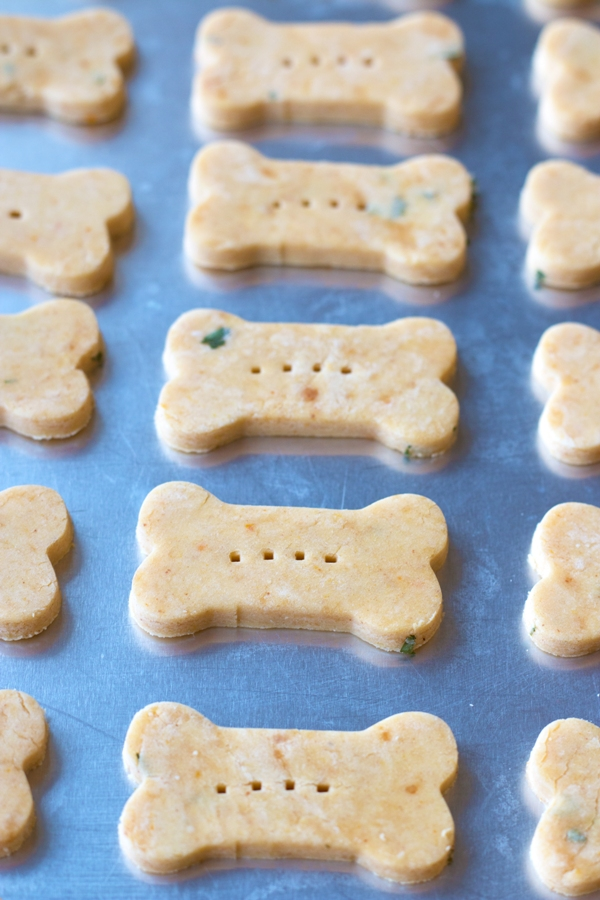 Peanut Butter Pumpkin Dog Treats | www.grainchanger.com